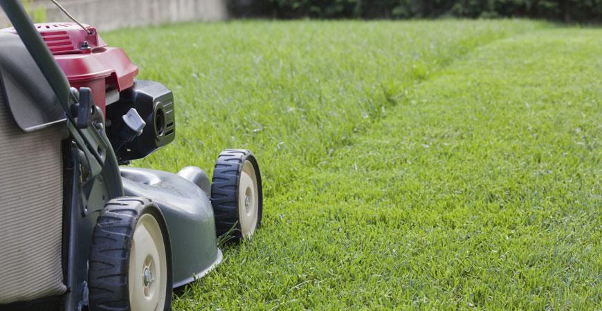 lawn mowing winnipeg